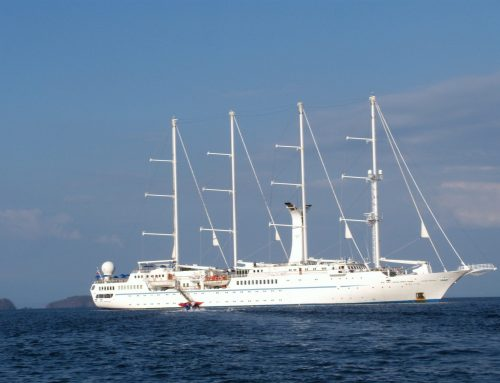 Experience the thrill of sailing with Windstar Cruises