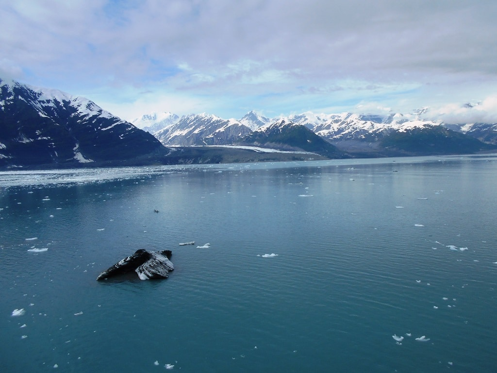 Alaska cruise cancellations