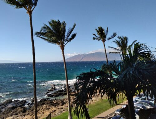 Reentry to the Mainland after a month in Maui is hard to do